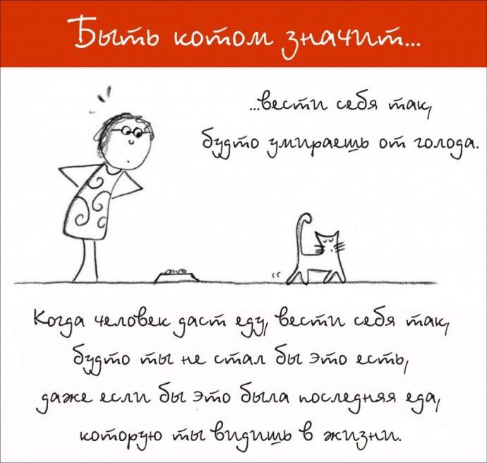 Так и живём! 19 иллюстраций, которые демонстрируют жизнь кота ) рис 10
