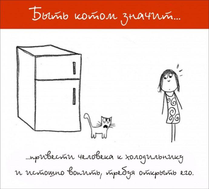Так и живём! 19 иллюстраций, которые демонстрируют жизнь кота ) рис 8