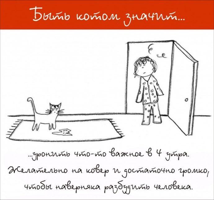 Так и живём! 19 иллюстраций, которые демонстрируют жизнь кота ) рис 6
