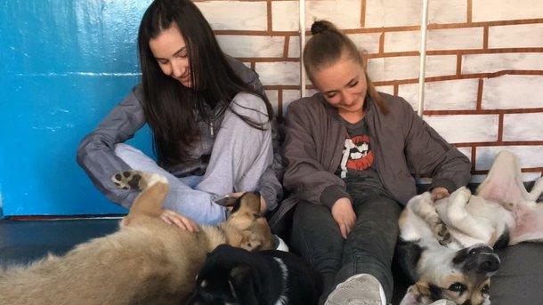 Хрупкие девушки боролись за детскую мечту! Им удалось спасти десятки животных...