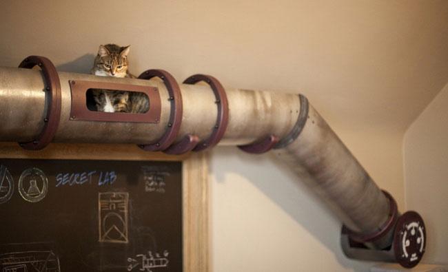 А у нас на кухне газ, а у вас? А у нас КОТопровод, вот! 10 самых необычных домиков для котов)