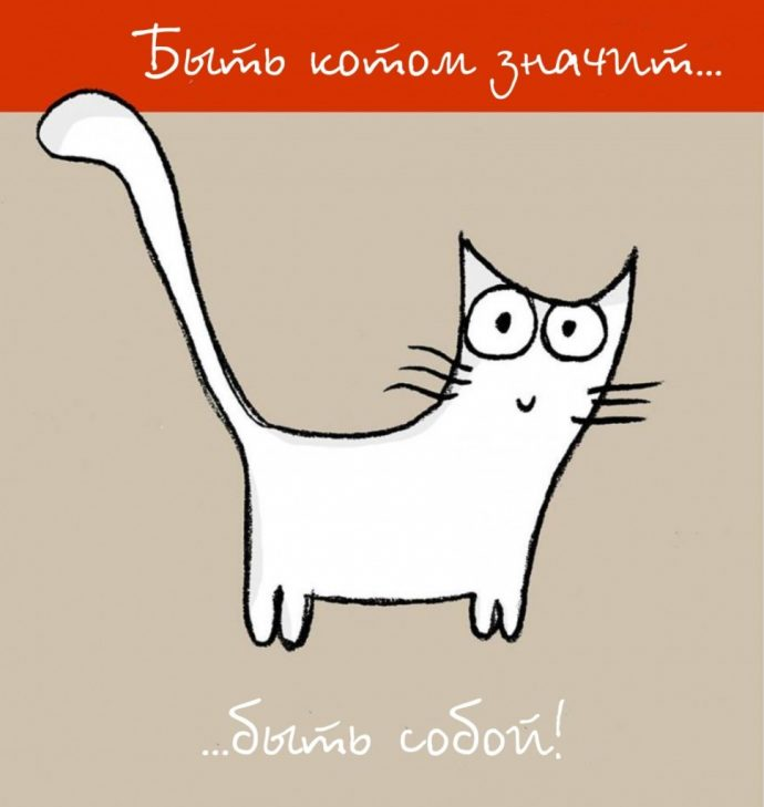 Так и живём! 19 иллюстраций, которые демонстрируют жизнь кота ) рис 19