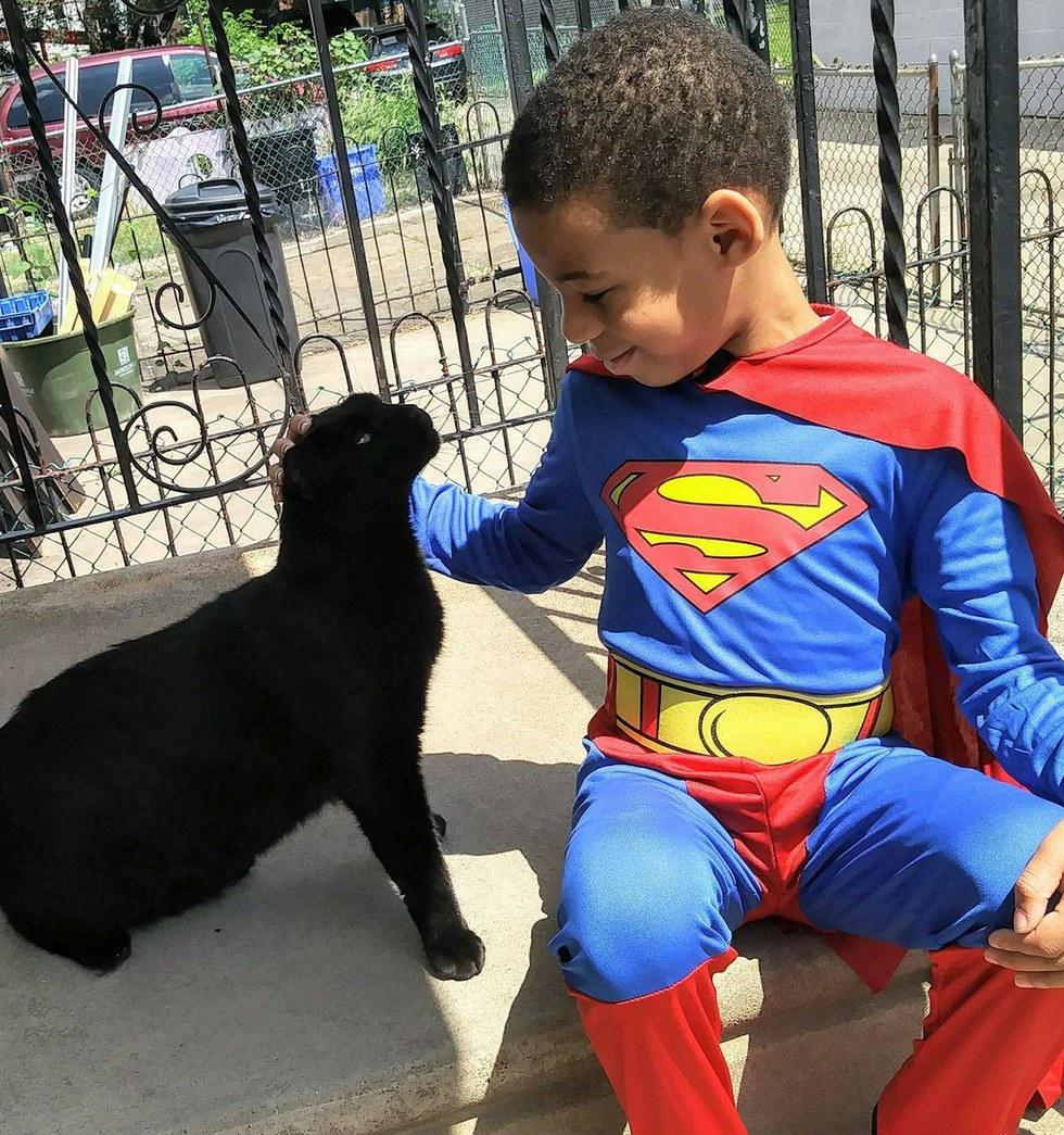 Встречайте Кэтмена! :) 5-летний мальчик стал настоящим супергероем для бездомных котов! ))