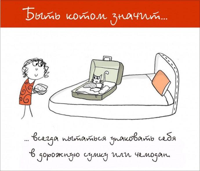 Так и живём! 19 иллюстраций, которые демонстрируют жизнь кота ) рис 15