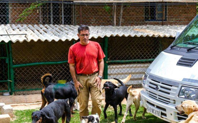 """""""Бриллианты, яхты и авто? Нет уж, я лучше собакам помогу!"""" Богач спас 735 питомцев и это лишь начало! рис 5"""