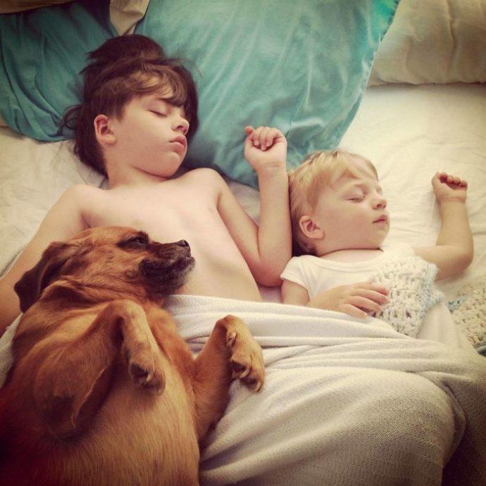 Живая подушка на страже сна! 10 самых умилительных фото спящих детей и их любимцев рис 9