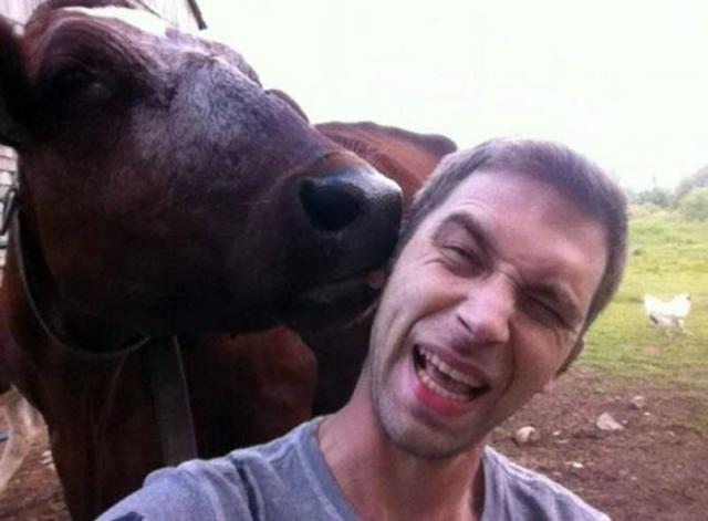 Это кто тут царь на Земле? Животные просто хотели познакомиться, но что-то пошло не так! :) рис 12