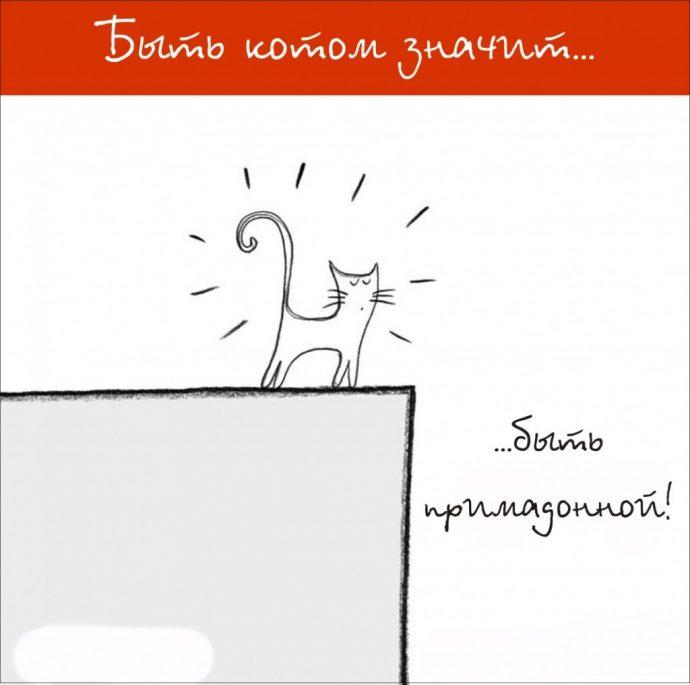 Так и живём! 19 иллюстраций, которые демонстрируют жизнь кота ) рис 14
