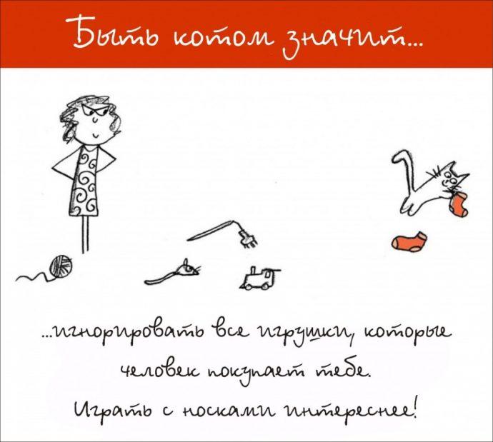 Так и живём! 19 иллюстраций, которые демонстрируют жизнь кота ) рис 13