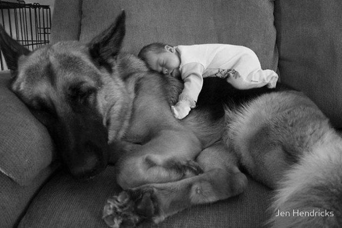 Живая подушка на страже сна! 10 самых умилительных фото спящих детей и их любимцев рис 4