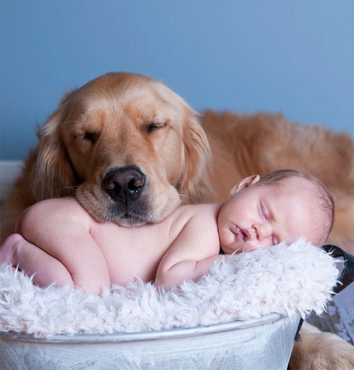 Живая подушка на страже сна! 10 самых умилительных фото спящих детей и их любимцев рис 8