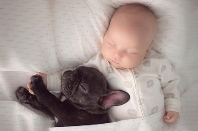 Живая подушка на страже сна! 10 самых умилительных фото спящих детей и их любимцев рис 6
