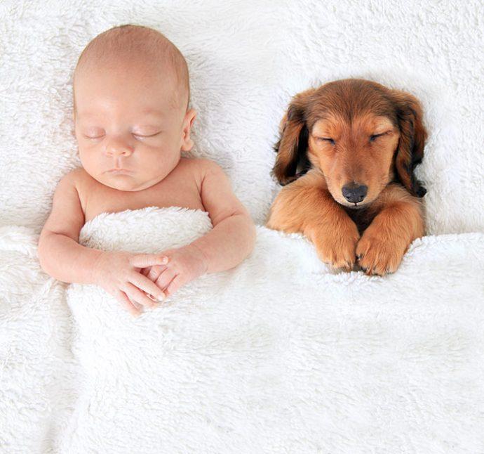 Живая подушка на страже сна! 10 самых умилительных фото спящих детей и их любимцев рис 2