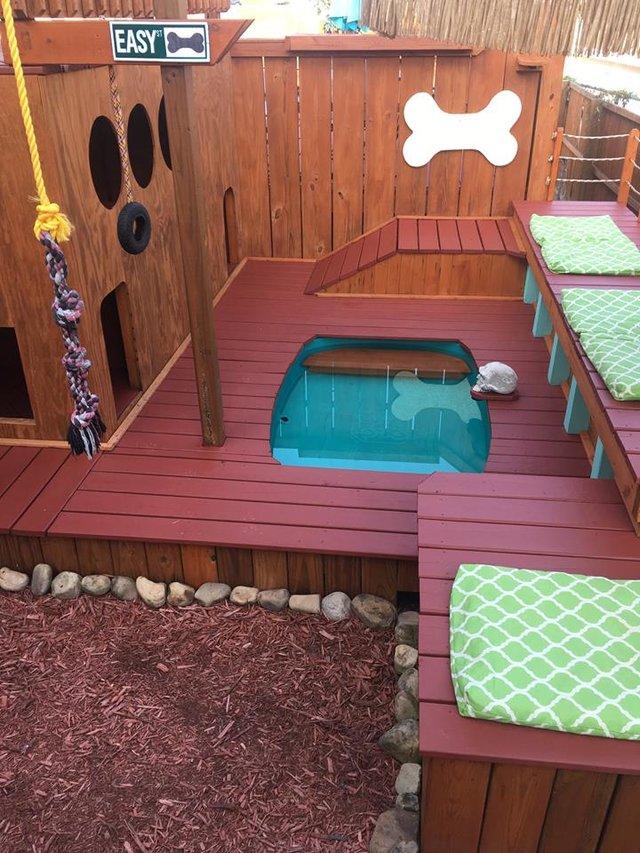 Рай для собак на заднем дворе!) Парень создал нечто невероятное для своих питомцев! рис 5