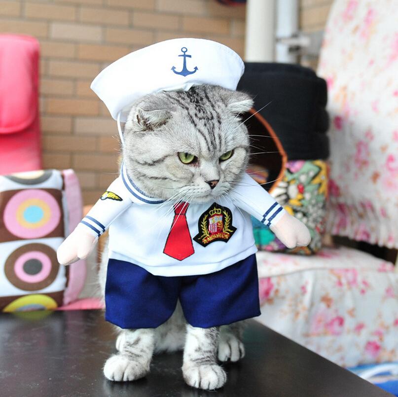 Неужели это - для живых котов?! Обзор весёлых, но бесполезных костюмов для вашего питомца рис 4