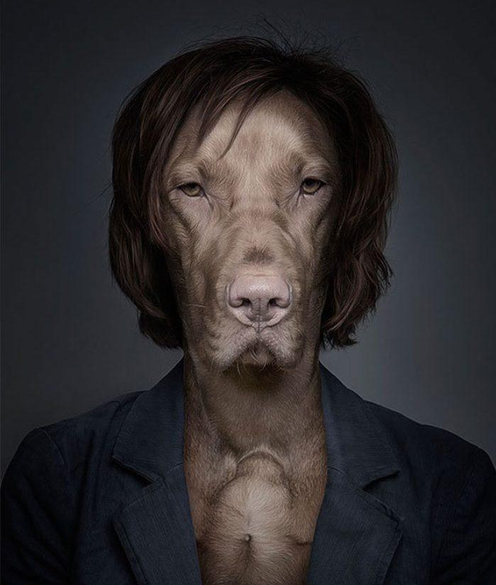 «Хозяин, теперь я тоже человек!» Эти собаки слишком удачно замаскировались под людей! :) рис 16
