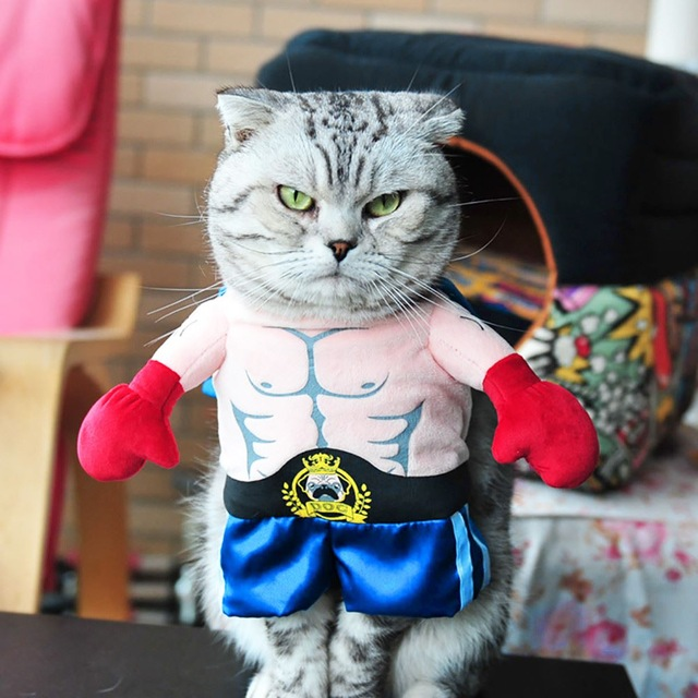 Неужели это - для живых котов?! Обзор весёлых, но бесполезных костюмов для вашего питомца рис 3