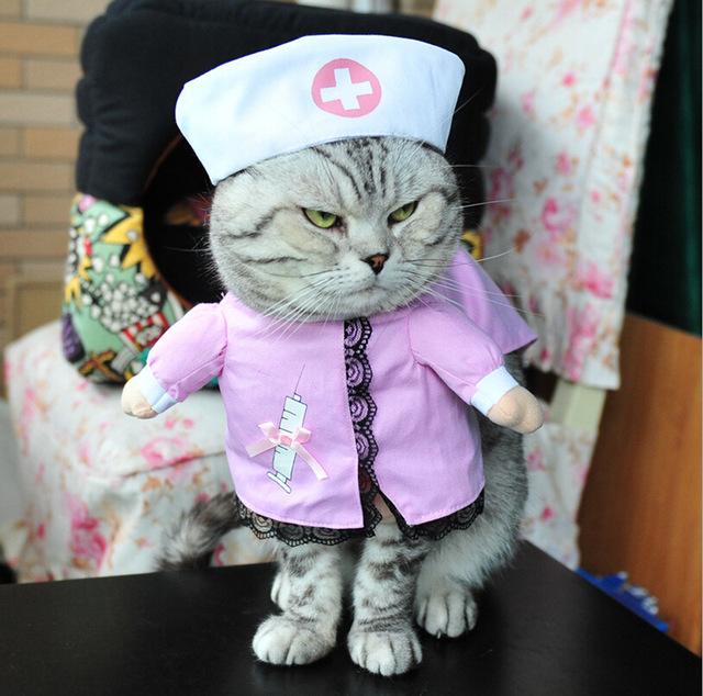 Неужели это - для живых котов?! Обзор весёлых, но бесполезных костюмов для вашего питомца рис 6