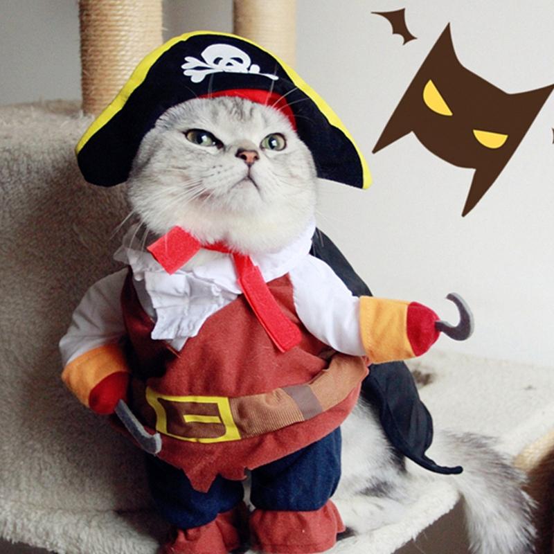 Неужели это - для живых котов?! Обзор весёлых, но бесполезных костюмов для вашего питомца рис 5