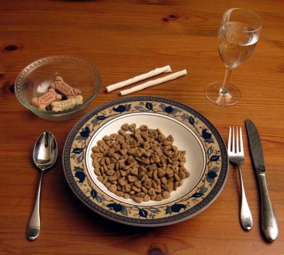dog-food-lo-res-001-556x500