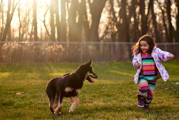 dogs-kids01