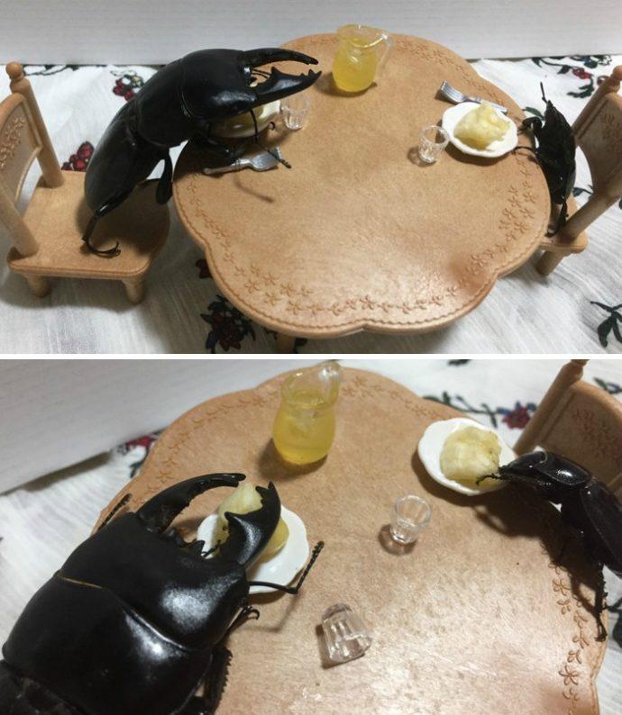 drawing-bug-spike-the-beetle-japan-25-59b8dfd98d125__700