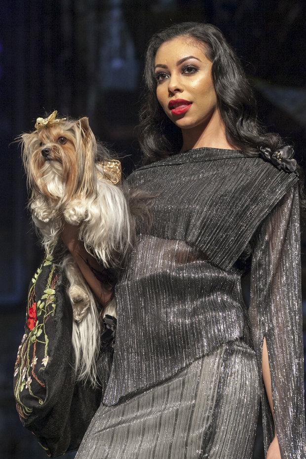 unleashed-anthony-rubio-dog-show-09