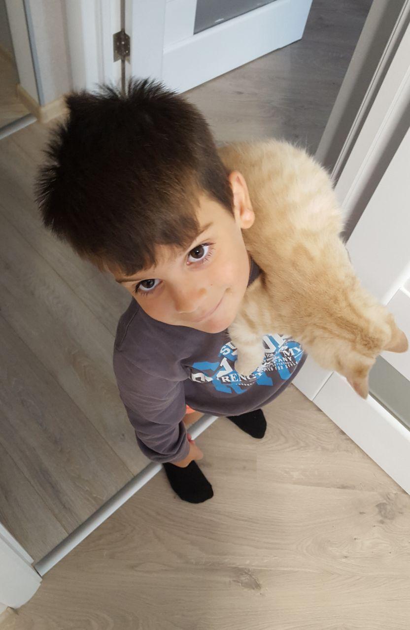 """""""Благородно-розового котёнка мне предложила красивая незнакомка..."""" Так появился Хопа - кот, у которого не было... прорези глаз! рис 3"""