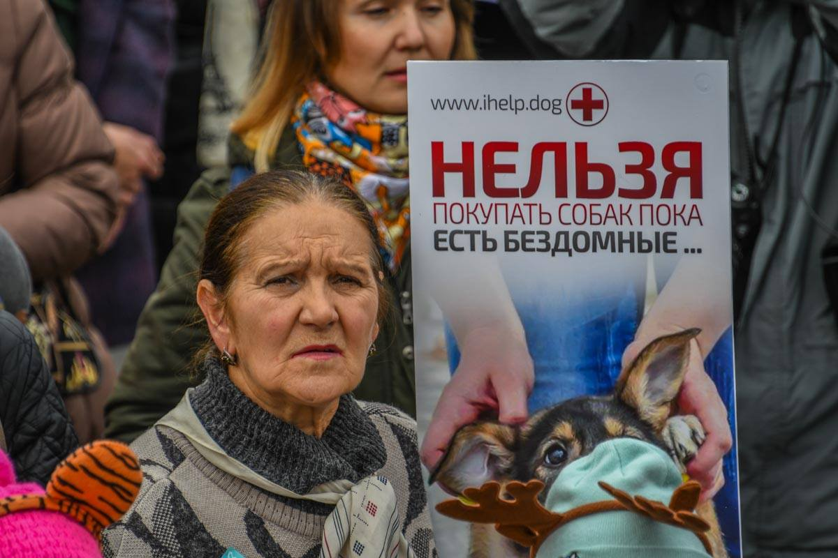 Зоозащитники митингуют! В Киеве прошел ежегодный марш за права животных: вот как всё было! рис 7