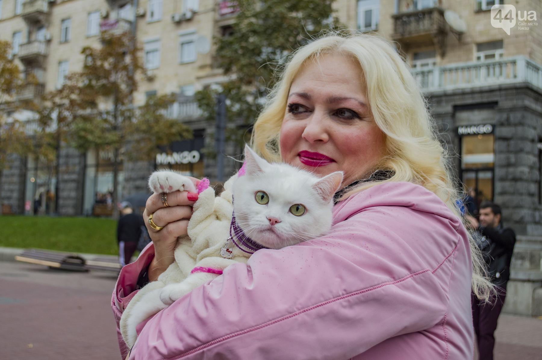 Зоозащитники митингуют! В Киеве прошел ежегодный марш за права животных: вот как всё было! рис 6