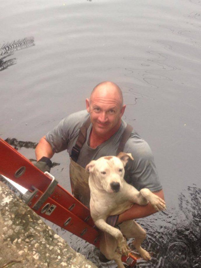 NTD-rescuers-drowning-creature-lurking-behind0-6