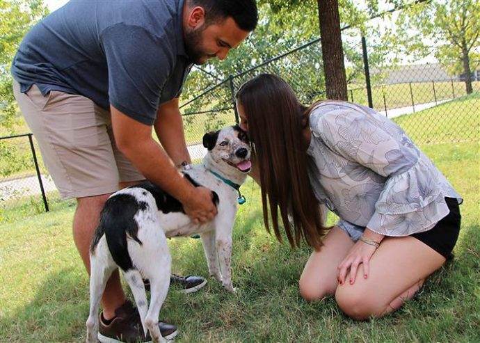 adopted-dog-today-170923-inline-03_311d206e023a0ae83f6cd6e7e1ee4e65.today-inline-large