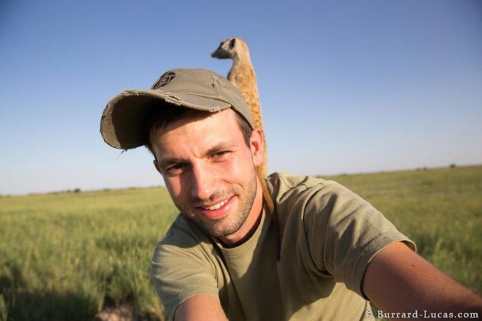 meerkats05
