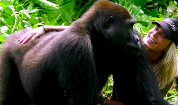 14-gorilla-hug
