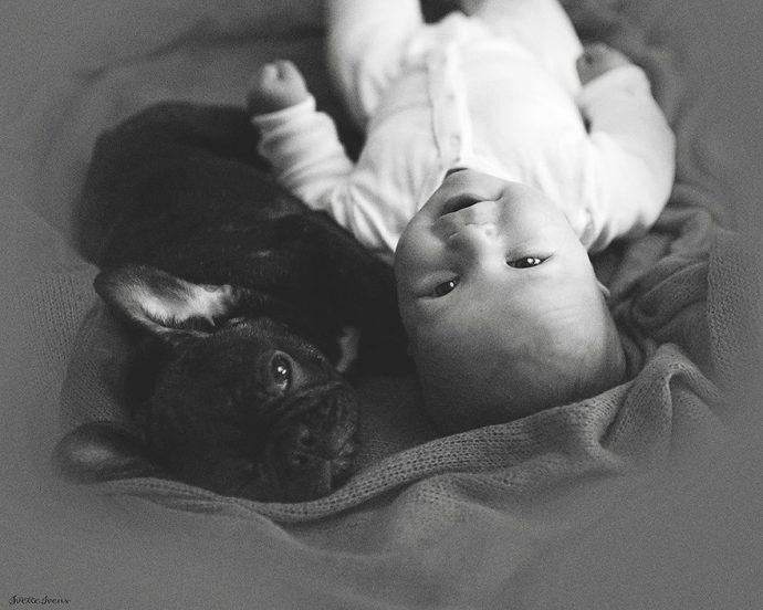 BabynBulldog05