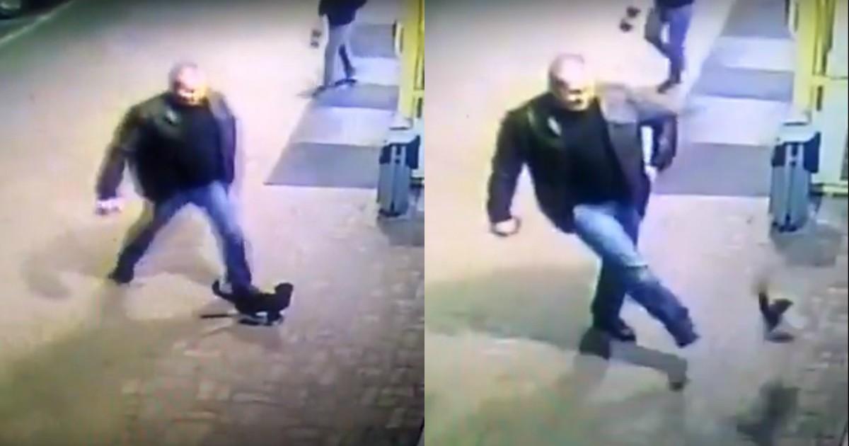 Белорусский милиционер ударил беззащитного кота... За что вскоре и поплатился! Видео