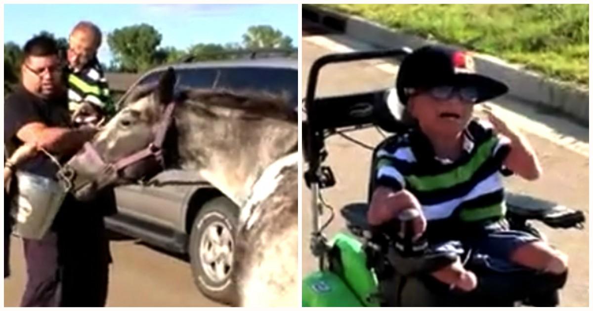 У каждого должна быть родственная душа! Одноглазая лошадь подарила мальчику-инвалиду самый счастливый день! рис 4