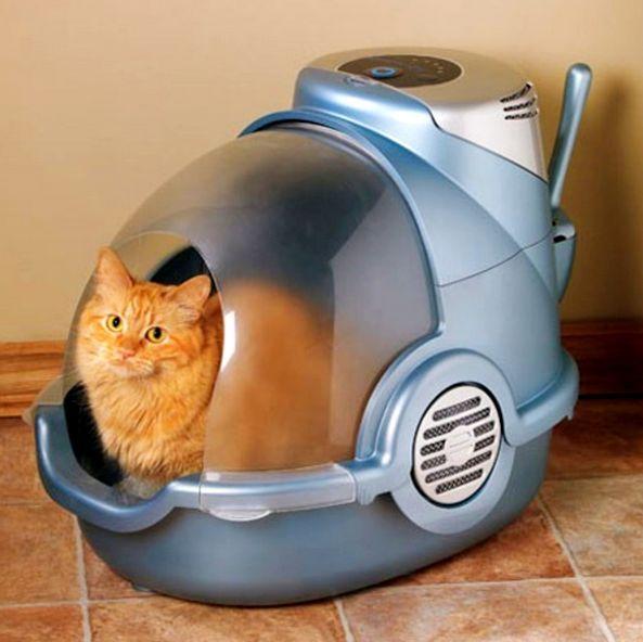 Cat_toilet_04