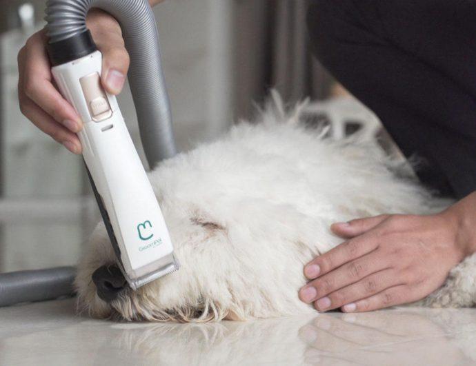 GroomPal-Mess-Free-Dog-Grooming-Device-2