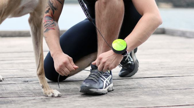 Lishinu, The Hands-Free Retractable Dog Leash