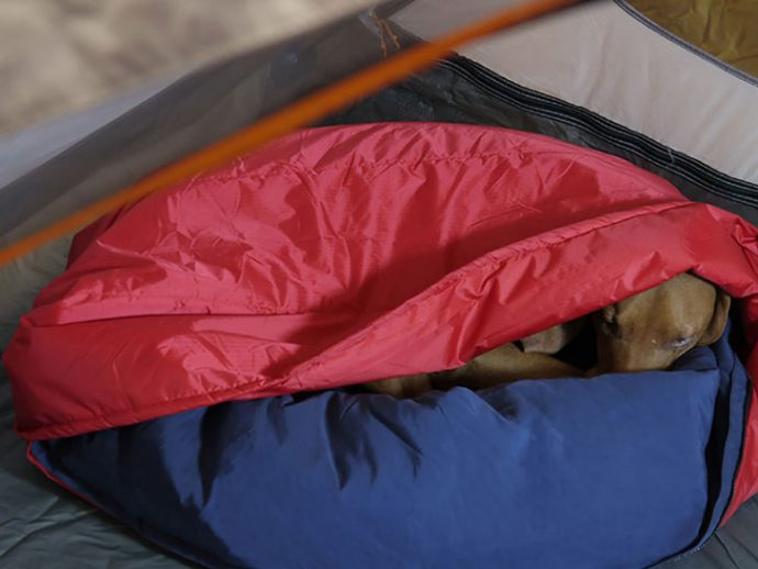 Portable-2-in-1-Dog-Bed-Sleeping-Bag-1