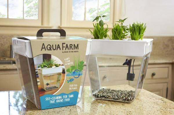 """""""Он сам подсказал мне, каким сделать его водяной дом!"""" Видео-послание от Масяни: хочу идеальный аквариум с самоочисткой!) рис 2"""