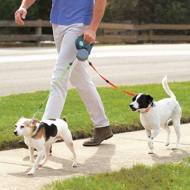 dual-dog-leash