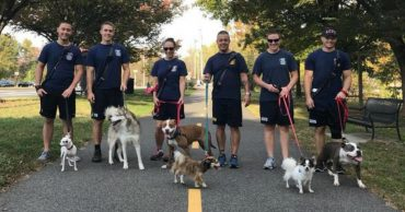 firefighters-walk-shelter-dogs2
