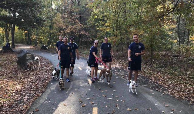 firefighters-walk-shelter-dogs3
