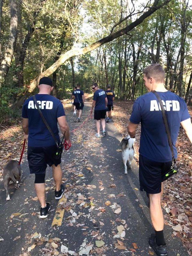 firefighters-walk-shelter-dogs4