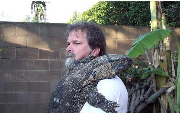 iguana-greeting-5-1-e1510070501768