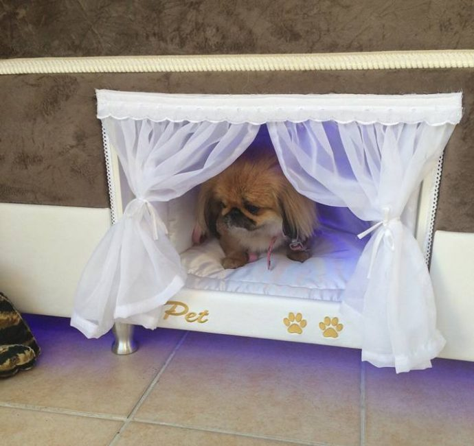 mattress-dog-bed-8726