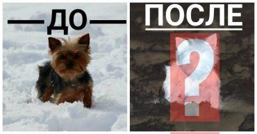 до и после-01