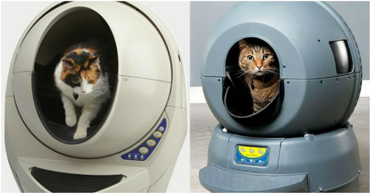 Выбираем биотуалет для кошек обзор устройств